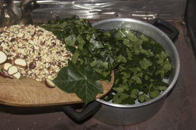 Biowaschmittel selbst herstellen